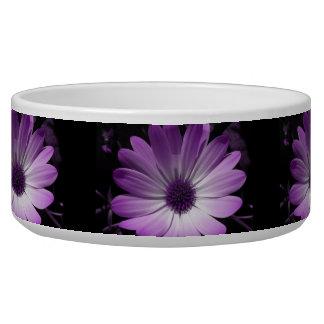 Purple Daisy Flower Dog Bowl