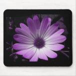 Purple Daisy Flower Mousepad