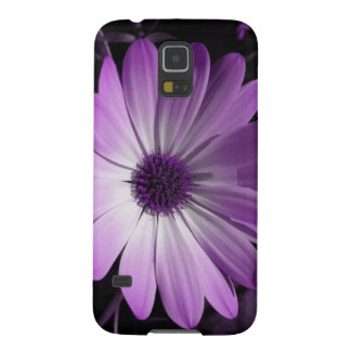 Purple Daisy Flower Samsung Galaxy Case