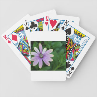 Purple Daisy Flower With A Hint Of Yellow Bicycle Playing Cards