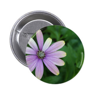 Purple Daisy Flower With A Hint Of Yellow Button