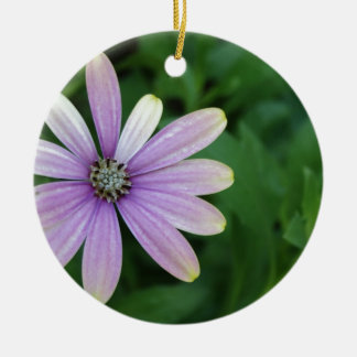 Purple Daisy Flower With A Hint Of Yellow Ceramic Ornament