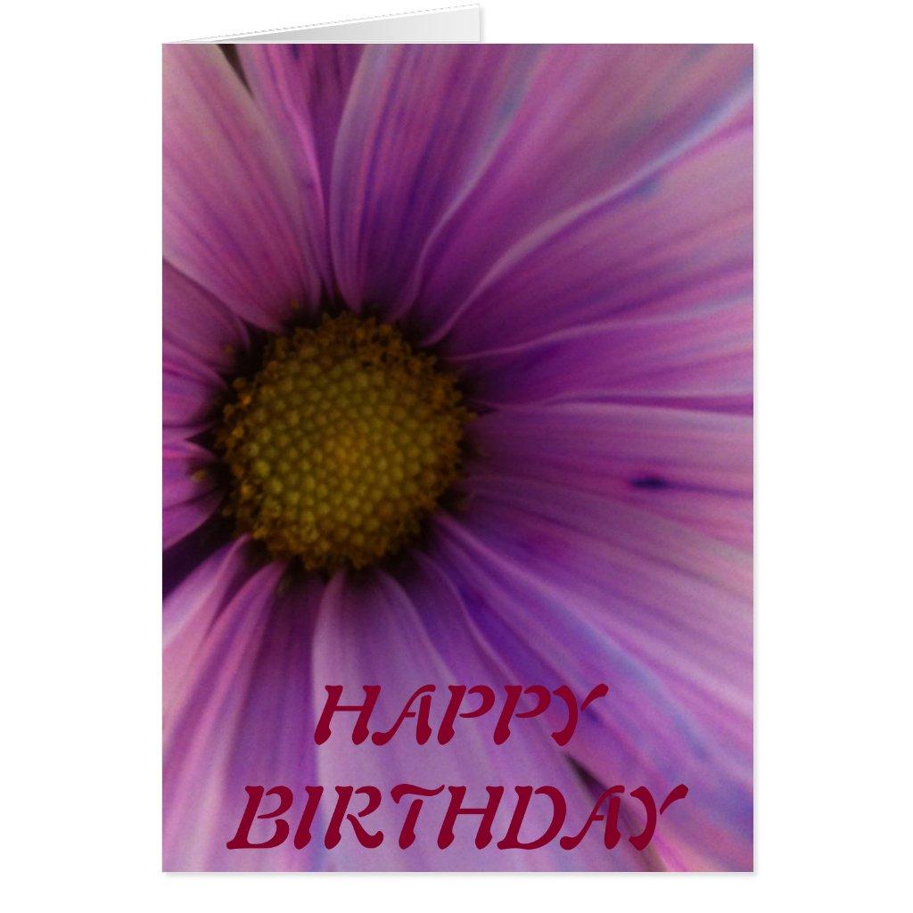[Image: purple_daisy_happy_birthday_greeting_car...r_1024.jpg]