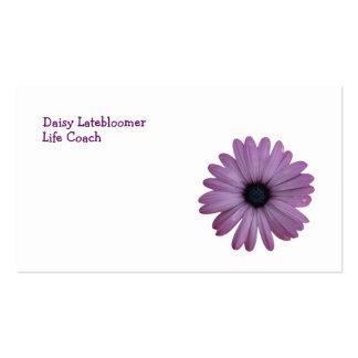 Purple Daisy Like Flower Osteospermum ecklonis Business Cards