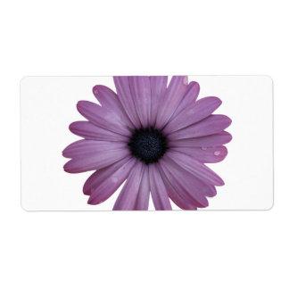 Purple Daisy Like Flower Osteospermum ecklonis Custom Shipping Labels