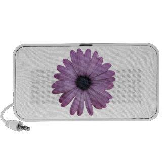 Purple Daisy Like Flower Osteospermum ecklonis iPhone Speakers