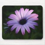 Purple Daisy Mouse Mat