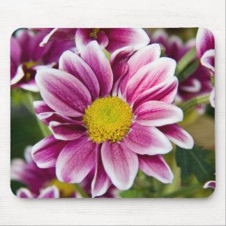Purple daisy mousepad