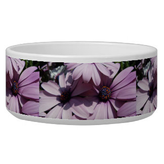 Purple Daisy Party Bowl