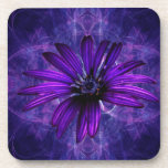 Purple Daisy Passion Coasters