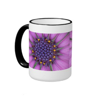 Purple Daisy Picture Coffee Mugs