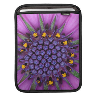 Purple Daisy Picture Sleeve For iPads