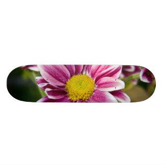 Purple daisy skate board deck