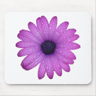 Purple Daisy with Raindrops Mousepads