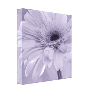 Purple Daisy Wrapped Canvas Print