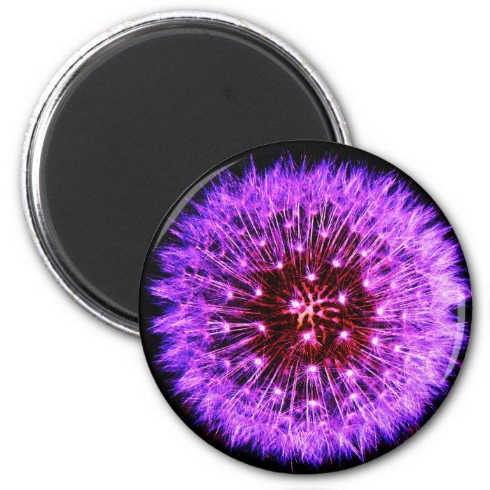 Purple Dandelion Puff Design Magnet