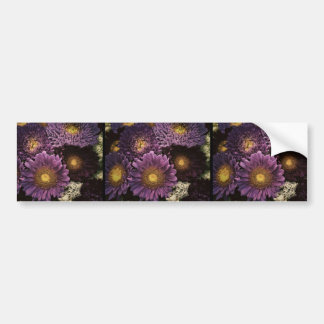 Purple Desert Flowers Bumper Sticker