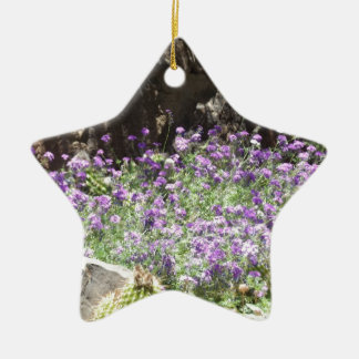 Purple Desert Flowers Ceramic Ornament