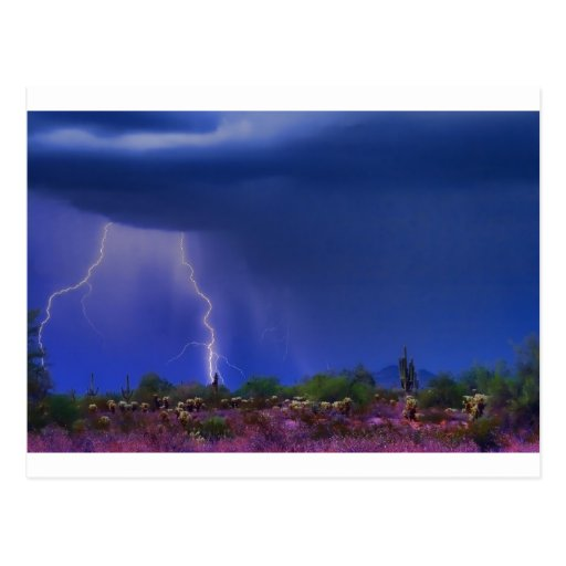 Purple Desert Storm Postcard
