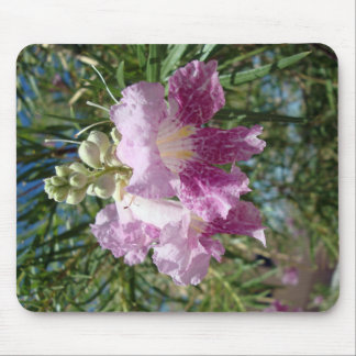 Purple Desert Willow Blossom Mouse Pad