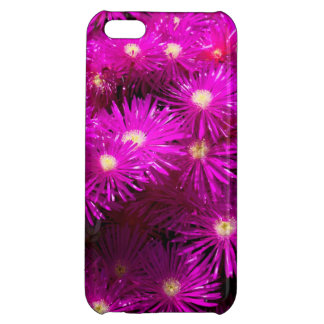 Purple Dome Aster Cover For iPhone 5C