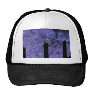 Purple Dragonfly Hat