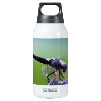 Purple Dragonfly Thermos Bottle
