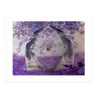 Purple Dragons Postcard