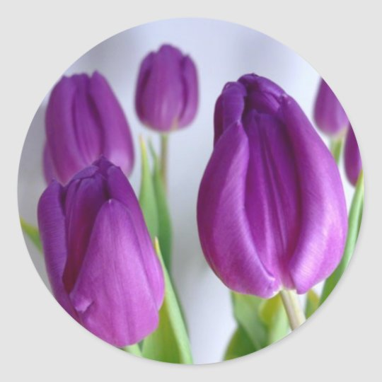 Purple Easter Tulips Stickers