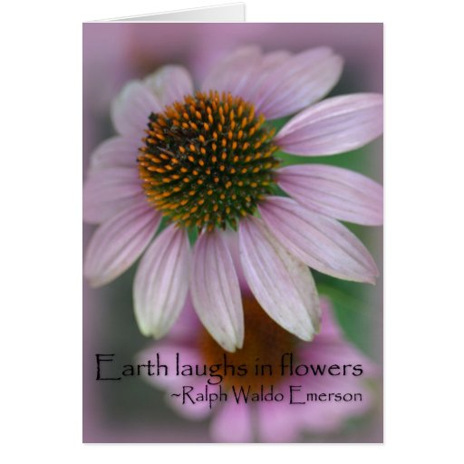 Purple echinacea Emerson Flower Quote Greeting Card