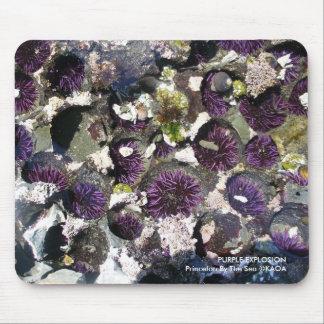 Purple Explosion Mouse Pad