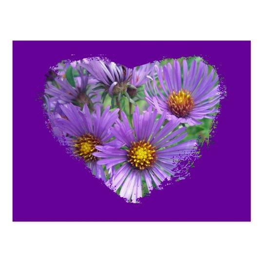 Purple Fall Asters Wildflower Matching Items Postcard