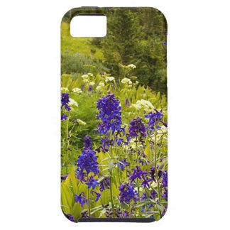 Purple Field iPhone 5 Covers