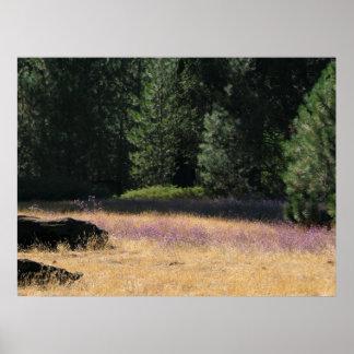 Purple Field Print