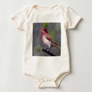Purple Finch Baby Bodysuit