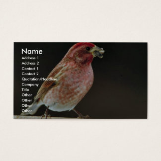 Purple finch business card