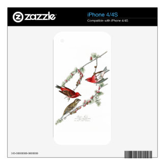 Purple Finch John James Audubon Birds of America iPhone 4S Decals