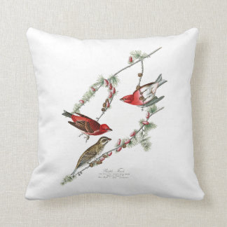 Purple Finch John James Audubon Birds of America Throw Pillow