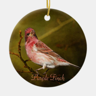 Purple Finch Photography Round Christmas Ornaments