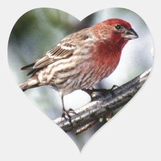 Purple Finch -  The State Bird of NH Heart Sticker