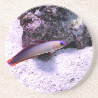 Purple_Firefish Drink Coaster