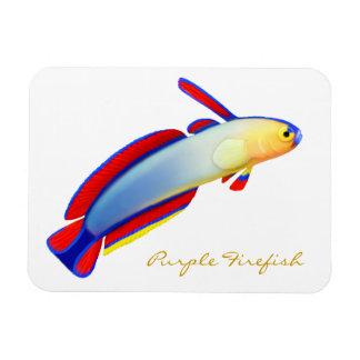 Purple Firefish Goby Premium Flexi Magnet