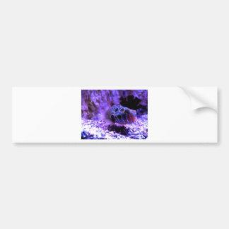 Purple Fish Animal Bumper Sticker