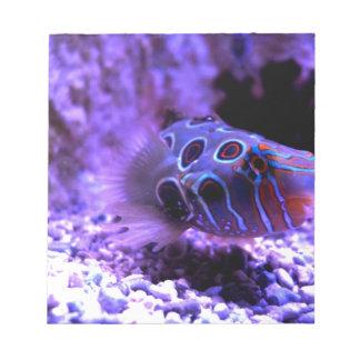 Purple Fish Animal Note Pads