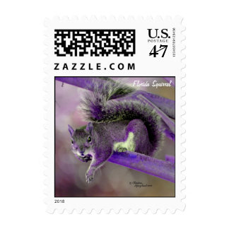 Purple florida squirrel Postage