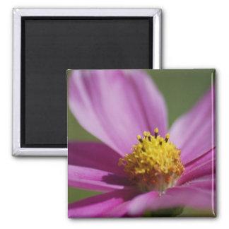 Purple flower 2 inch square magnet