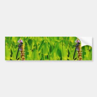 Purple flower and Blue Dragonfly Bumper Sticker