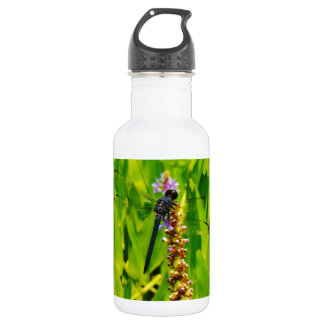 Purple flower and Blue Dragonfly 18oz Water Bottle