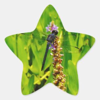 Purple flower and Blue Dragonfly Star Sticker