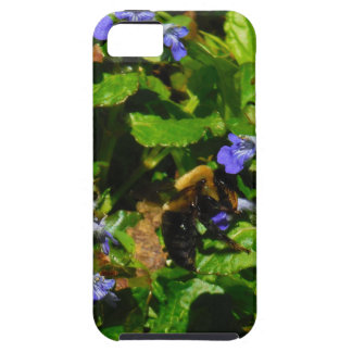Purple Flower and Bumble Bee iPhone 5 Cases